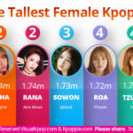 The tallest idols in the K-pop industry